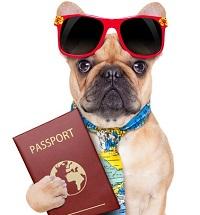 Mascotas con pasaporte.