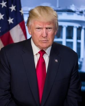Foto oficial de Donald Trump, actual presidente de los Estados Unidos de América.